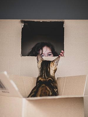 In cardboard box - p1522m2072810 by Almag