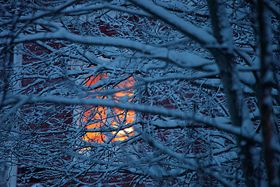 Window behind twigs covered with snow - p2351720 by KuS