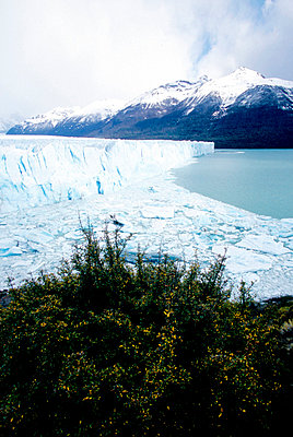 Natural view of Perito Moreno in Argentina, USA - p3484787 by Jonas Tufvesson