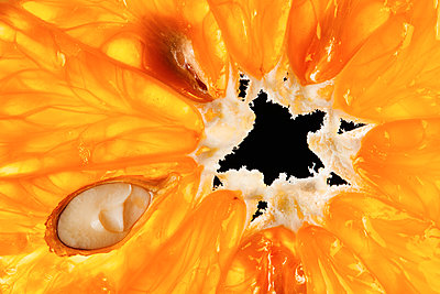 Orange fruit pulp close-up - p851m1214807 by Lohfink