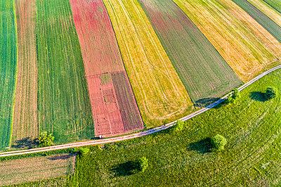 Germany, Baden-Wuerttemberg, Rems-Murr-Kreis, Aerial view of fields - p300m1587024 by Stefan Schurr