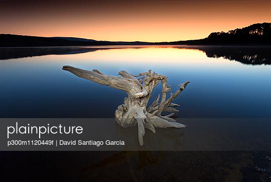 p300m1120449f von David Santiago Garcia