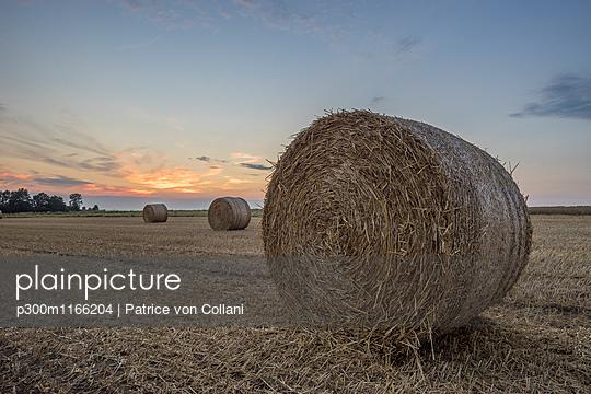 p300m1166204 von Patrice von Collani