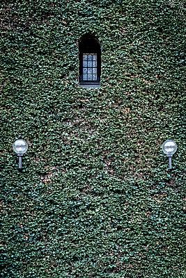 Fassade mit Efeu und zwei Lampen - p1170m2081705 von Bjanka Kadic