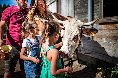 France, Family on a farm - p1007m2219976 by Tilby Vattard