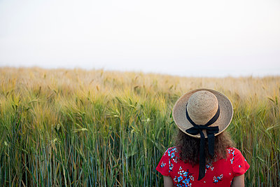 Back view of woman wearing straw hat and red summer dress with floral design standing in front of grain field - p300m2119701 by FL photography