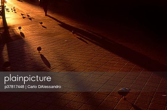 p37817448 von Carlo DAlessandro
