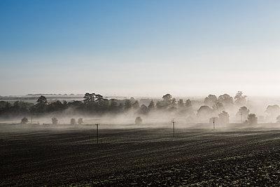 Early morning fog over field scenery - p1057m1488631 by Stephen Shepherd