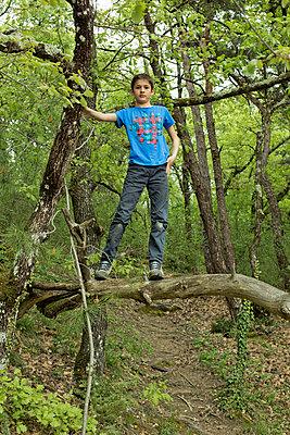 Boy in a tree - p445m911857 by Marie Docher