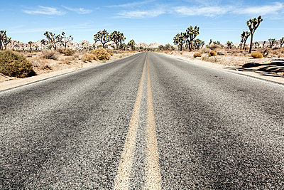 Joshua Tree National Park - p1094m971551 by Patrick Strattner