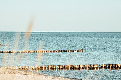 Wooden groynes, Heiligenhafen, Baltic Sea - p986m2288680 by Friedrich Kayser