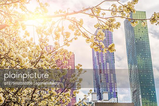 Melbourne Cityscape - p1275m2032056 von cgimanufaktur