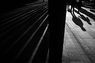 p1411m1559546 by Florent Drillon