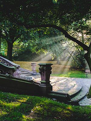 Friedhof Ohlsdorf an einem sonnigen Herbsttag, Hamburg - p1493m1584697 von Alexander Mertsch