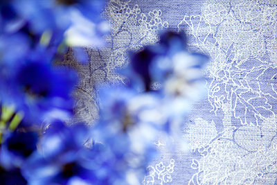 Blue Flowers - p1371m1425306 by Virginie Perocheau