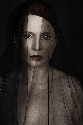 Black widow - p1574m2151342 by manuela deigert