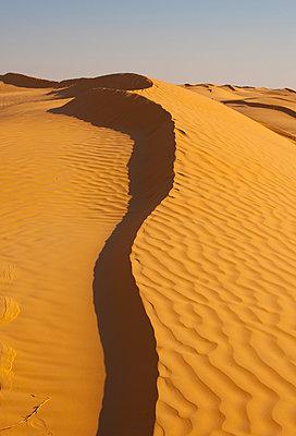 Sahara - p548m911693 by Fred Leveugle