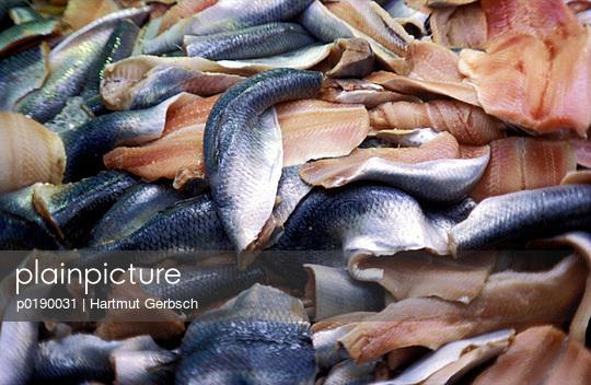 Fische - p0190031 von Hartmut Gerbsch
