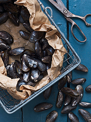 Sea mussels in metal basket - p312m1075988f by Matilda Lindeblad