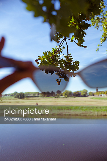 Blick durch Sonnenbrille auf Eicheln  - p432m2037830 von mia takahara