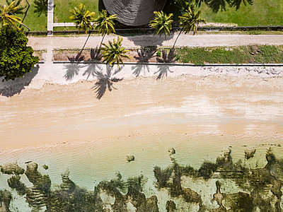 Aerial view of beach with palm trees,Sumbawaisland, Indonesia - p1166m2202339 by Konstantin Trubavin