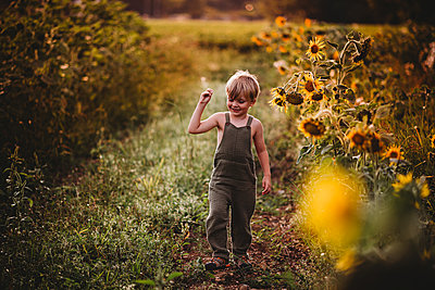 Young male child walking in a sunflower field smiling - p1166m2212680 by Cavan Images