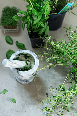 Mortar, pestle and herbs - p312m1551709 by Scandinav Images