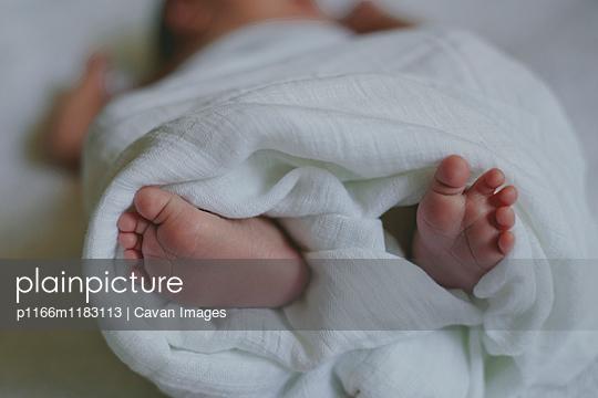 p1166m1183113 von Cavan Images