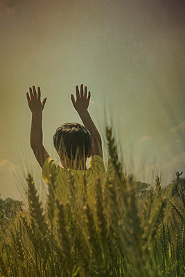 Little boy in wheat field  - p794m1035043 by Mohamad Itani