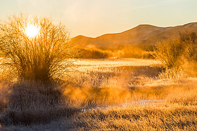 Sunrise over field in Picabo, Idaho - p1427m2066944 by Steve Smith