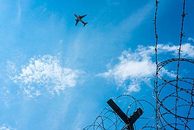 Überflieger - p229m2089465 von Martin Langer