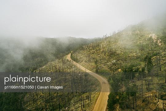 p1166m1521050 von Cavan Images
