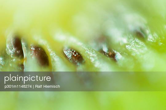 p301m1148274 von Ralf Hiemisch