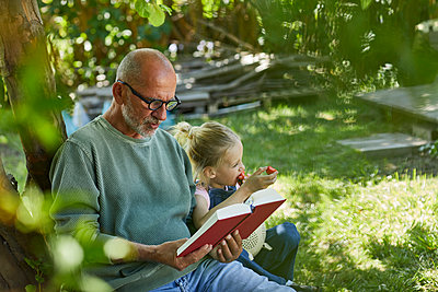Relaxed grandfather and granddaughter in garden reading a book and eating strawberries - p300m2198600 by Maya Claussen
