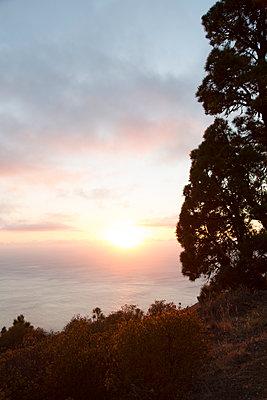 La Palma - p958m1113112 by KL23