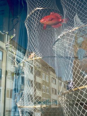 Netz mit rotem Plastikfisch - p9793558 von Zurborn