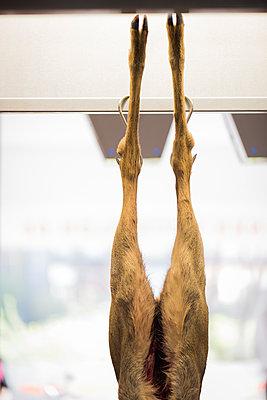 Reh hängt an Beinen - p1076m1492809 von TOBSN