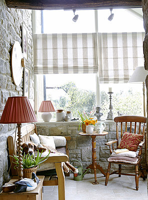 Dog on wooden bench seat in Hexham country house - p349m790383 by Brent Darby