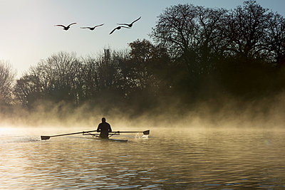 Sculling in mist on River Thames; London, England - p442m967785 by Charles Bowman