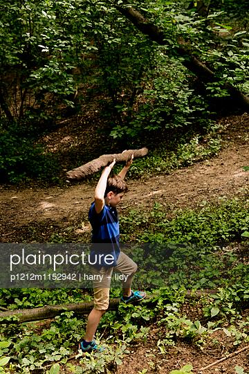 Junge im Wald hebt einen Ast hoch  - p1212m1152942 von harry + lidy