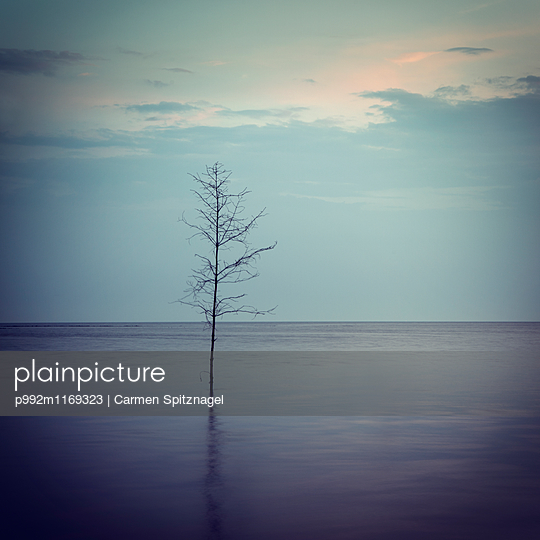 Wattenmeer - p992m1169323 von Carmen Spitznagel