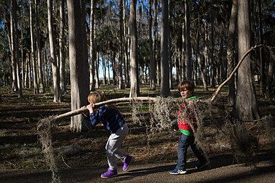 Kinder im Wald tragen Ast - p1308m2065308 von felice douglas