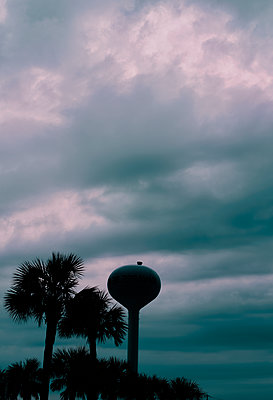 USA, Water tower next to palm trees - p1617m2278917 by Barb McKinney