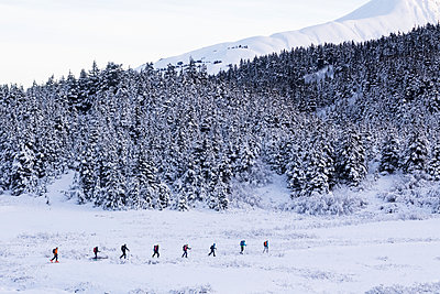 Skiers traveling together up Tincan Mountain in Turnagain Pass, Kenai Peninsula, Southcentral Alaska, USA - p442m1180891 by Doug Lindstrand