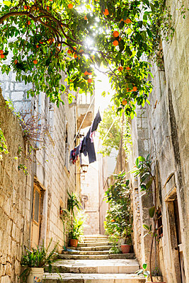 Alley with steps - p312m1470560 by Susanne Kronholm