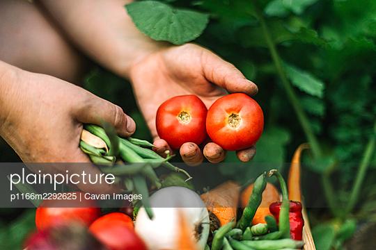 p1166m2292625 von Cavan Images