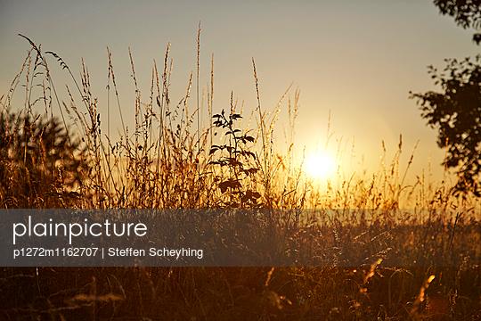 Morgendämmerung - p1272m1162707 von Steffen Scheyhing