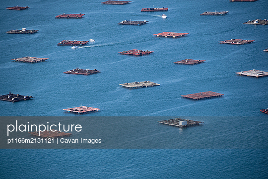 Aerial view of the mussels aquaculture rafts in Galicia - p1166m2131121 by Cavan Images