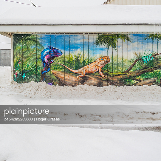 Tropical scene with reptiles painted on wall with snowcapped road - p1542m2209893 by Roger Grasas