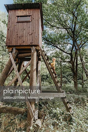 Preschooler boy climbing ladder of high seat in forest - p300m2275866 by Mareen Fischinger